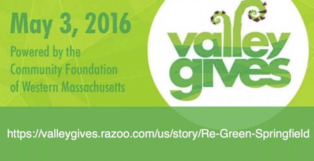 valley gives with rgs logo