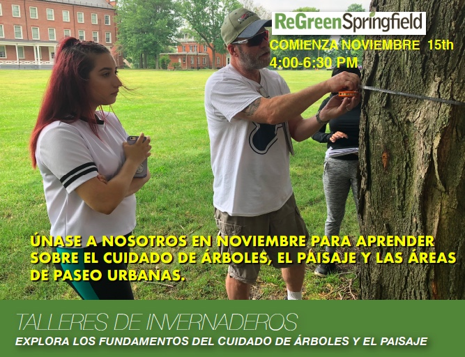 tree care workshops fall 2018 half page flyer spanish