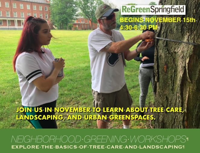 tree care workshops fall 2018 half page flyer