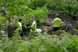 Regreen team members collect samples from the water at Abbey Brook.